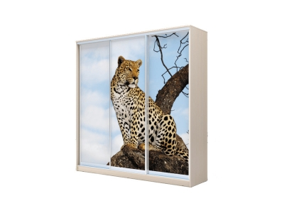 Шкаф-купе Хит 3-х дверный Леопард Дуб млечный
